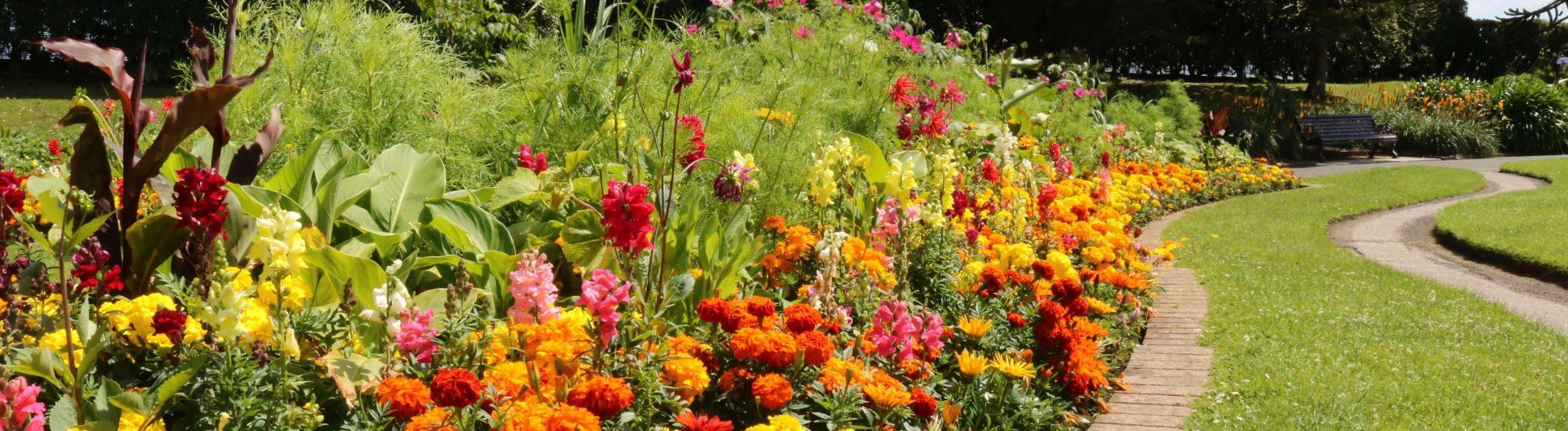 Quenn Mary Garden Gallery | Falmouth
