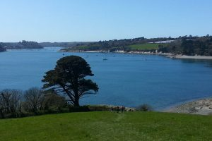 Helford River | Falmouth